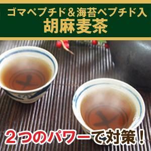 海苔ペプチド入り胡麻麦茶90g ごま麦茶 ゴマペプチド 粉末