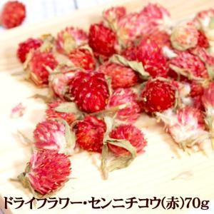 ドライフラワー・センニチコウ(赤)70g 花材 クラフト 千日紅 ハーブティー|saika