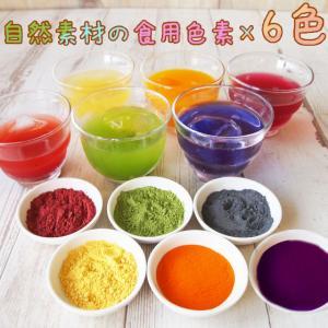 ナチュラルカラーパウダー 粉末食用色素 6色セット 赤 紫 黄 橙 青 緑 天然着色料 食紅 ハロウ...