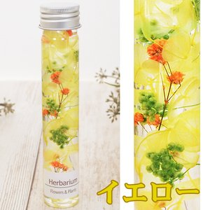 ハーバリウム フラワー 花アレンジ ギフト 誕...の詳細画像5