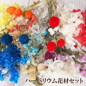 ハーバリウム花材セット あじさい プリザ ハーバリウム 紫陽花 ドライフラワー 花材 手作り 工作 ハンドメイド