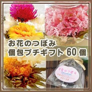 プチギフト 工芸茶 お花のつぼみ 個包ギフト60個セット|saika