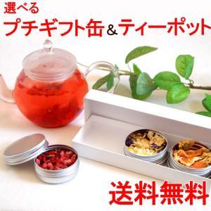お花のつぼみとバウムクーヘンとカーネーション鉢植え カーネーション茶  工芸茶|saika