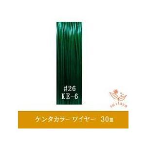 #26 KE-6 ケンタカラーワイヤー ミントグリーン 0.45mm×30m|saitayo