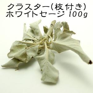 『100g』 ホワイトセージ クラスター 枝付き 浄化用|saj