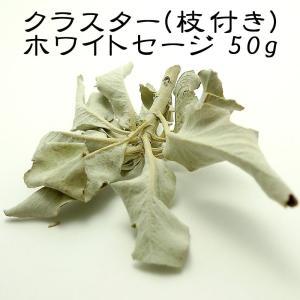 『50g』 ホワイトセージ クラスター 枝付き 浄化用|saj