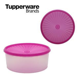Tupperware デコレーター タッパーウェア Tupperware Brands 限定 アウトレット|sakae-daikyo