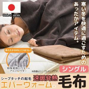 エバーウォーム 毛布 シングル 【受注発注】|sakai-f