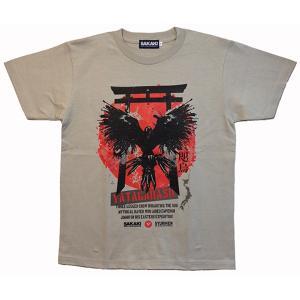 八咫烏は神武東征の際、熊野から大和へ道案内をしたとして知られている。 日本神話(古事記・日本書紀)に...