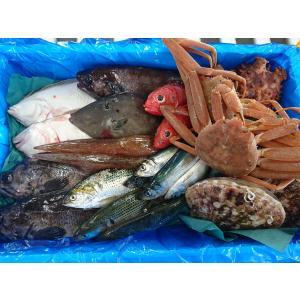 三陸 岩手 宮古 活き活き鮮魚詰合せ 1万円セット sakanayasan-gokko