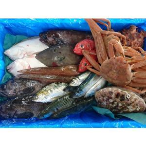 三陸 岩手 宮古 活き活き鮮魚詰合せ sakanayasan-gokko
