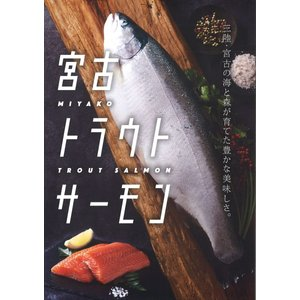 宮古トラウトサーモン 半身2枚入り sakanayasan-gokko