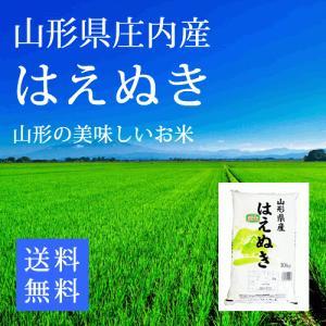 【29年産米】山形県庄内産 はえぬき 精白米10kg 送料無...
