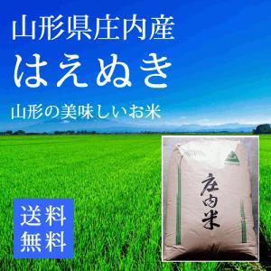 【29年産米】はえぬき 山形県庄内産一等米 玄米24kg...