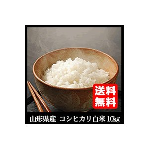【29年産米 】山形県庄内産 コシヒカリ 精白米10kg 送...
