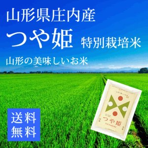 【28年産米】つや姫 白米10kg 特別栽培米  山形県庄内...
