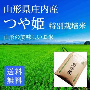 【29年産米】つや姫 玄米24kg 特別栽培米  山形県庄内...