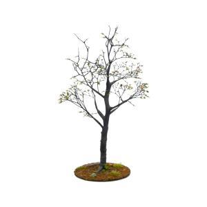 初秋の樹木 19cm前後 ベース付き 1本 :アクセサリーズフォーランドスケープ 塗装済み完成品 1/35〜48 特製008|sakatsu