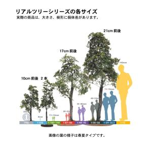 初秋の樹木 19cm前後 ベース付き 1本 :アクセサリーズフォーランドスケープ 塗装済み完成品 1/35〜48 特製008|sakatsu|05
