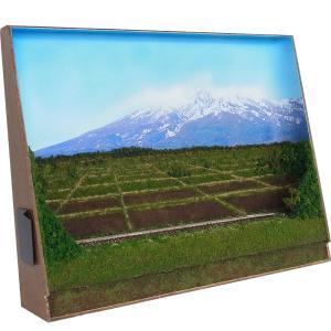 B4ジオラマ額 「春の田園を走る」 :スギモック 塗装済完成品 N(1/150) 1331|sakatsu