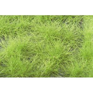 草の茂み‐萌える春 :ミニネイチャー 素材 ノンスケール 727-31|sakatsu