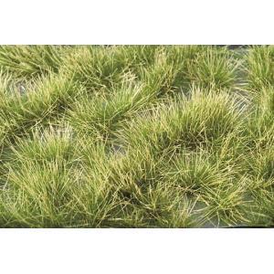 マイクロパック 光る草の茂み‐夏の盛りに :ミニネイチャー 素材 ノンスケール 737-32m|sakatsu