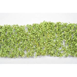 ポプラの枝葉(1:45+)-新緑 :ミニネイチャー 素材 ノンスケール 913-31|sakatsu