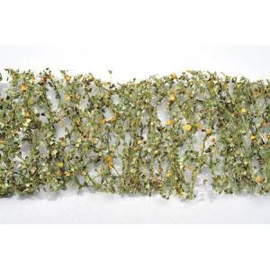 ポプラの枝葉(1:45+)-秋の訪れ :ミニネイチャー 素材 ノンスケール 913-33 sakatsu