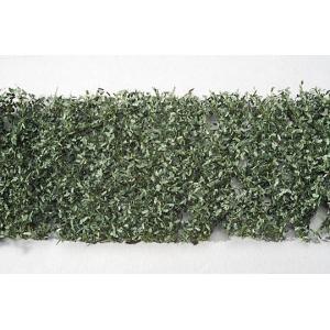 カシの枝葉(HO)‐夏の盛り :ミニネイチャー 素材 ノンスケール 980-22|sakatsu