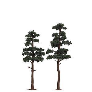 パイン(松) :ブッシュ 完成品 HO(1/87) 6142|sakatsu
