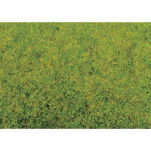 グラスマスター用繊維系素材 スタティックグラス 2.5mm 春の若草 20g :ノッホ 素材 ノンスケール 8300|sakatsu