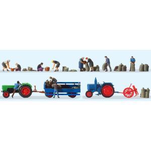 ジャガイモの収穫 農夫11体、トラクター(DEUTZ D 6...