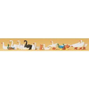 アヒルと鴨と白鳥 :プライザー 塗装済完成品 HO(1/87) 14167|sakatsu