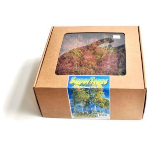 オランダドライフラワー(スーパーツリー Super Trees) :シーニックエクスプレス キット ノンスケール 214|sakatsu|04