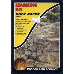 入門素材セット 岩肌 :ウッドランド 素材 ノンスケール LK951|sakatsu