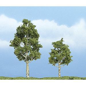 プレミアム・ツリー 白樺(アスペン) 6〜8cm :ウッドランド 塗装済完成品 ノンスケール 1612|sakatsu