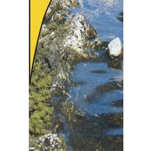 水辺キット(WATER KIT) :ウッドランド 素材 ノンスケール 5153|sakatsu