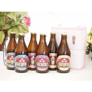 贈り物 ミツボシビール飲み比べ6本(ピルスナー、ペールエール、ウインナスタイルラガー)330ml×各2バレンタイン|sake-gets