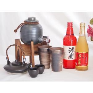 焼酎サーバー還暦祝いセット焼酎ギフト (祝の赤 黒麹造り芋焼酎720ml、還暦限定 お屠蘇酒 500ml )|sake-gets