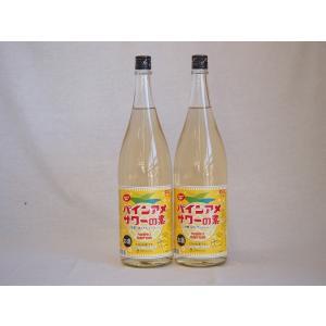 パインアメサワーの素 甘酸っぱくジューシーパイナップル果汁 25度 中野BC(和歌山県)1800ml×2|sake-gets