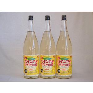 パインアメサワーの素 甘酸っぱくジューシーパイナップル果汁 25度 中野BC(和歌山県)1800ml×5|sake-gets