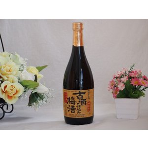 古酒仕込み梅酒 長期熟成 南高梅100%使用 720ml×1本|sake-gets