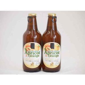 フルーツドラフト アプリコット&オレンジ 発泡酒 金しゃちビール(愛知県)330ml×2本 sake-gets