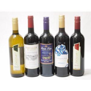 ワインセット 赤ワイン 白ワイン 5本 高品質ワイン5本福袋(赤4本、白1本)(スペイン赤、チリ赤、フランス赤、イタリア赤、イタ|sake-gets