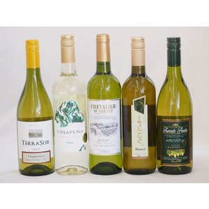 ワインセット セレクション 白ワイン 5本セット ( スペインワイン 1本 フランスワイン 1本 イタリアワイン 1本 チリワイ|sake-gets