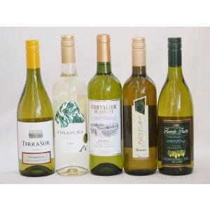 キャッシュレス5%還元 ワインセット 2セット セレクション 白ワイン 5本×2セット ( スペインワイン 1本 フランスワイン 1本 イタリアワインお歳暮 クリスマス|sake-gets