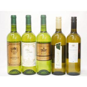 キャッシュレス5%還元 ワインセット セレクションセレクト 白ワイン 5本セット ( フランスワイン 3本 イタリアワイン 2本)計750ml×5本お歳暮 クリスマス|sake-gets
