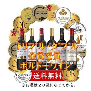 ALLダブル金賞受賞赤ワイン6本セット(ブルーダイアモンド社燻製風味アーモンド付)フランスボルドー産 750ml×6本 sake-gets