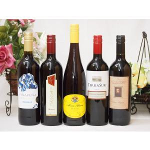 ワインセット セレクション 赤ワイン 5本セット ( イタリアワイン 2本 チリワイン 1本 ドイツワイン 1本 スペインワイン|sake-gets