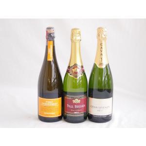 ワインセット 世界のスパークリングワイン飲み比べ!辛口3本セット(スペイン、フランス、イタリア泡ワイン3本セット|sake-gets